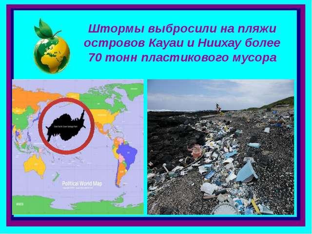Штормы выбросили на пляжи островов Кауаи и Ниихау более 70 тонн пластикового...