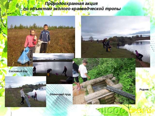 Природоохранная акция по объектам эколого-краеведческой тропы Сосновый бор Об...
