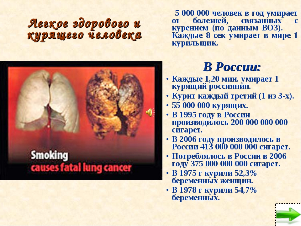 Легкое здорового и курящего человека 5 000 000 человек в год умирает от болез...