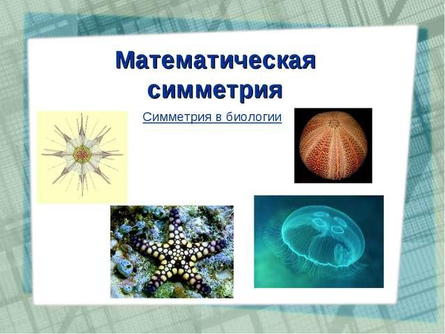 Математическая симметрия Симметрия в биологии