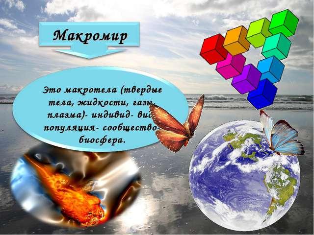 Это макротела (твердые тела, жидкости, газы, плазма)- индивид- вид- популяция...