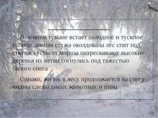 ______________ В зимнем тумане встает холодное и тусклое солнце зимняя сту