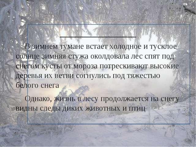 ______________ В зимнем тумане встает холодное и тусклое солнце зимняя сту...