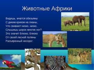 Животные Африки Видишь, мчатся обезьяны С диким криком на лианы, Что свивают