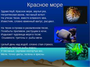 Красное море Здравствуй, Красное море, акулья уха, Негритянская ванна, песчан