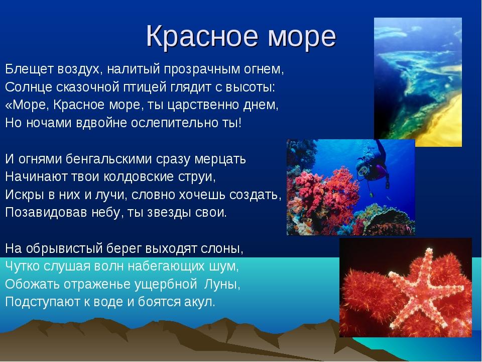 Красное море Блещет воздух, налитый прозрачным огнем, Солнце сказочной птицей...