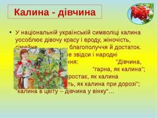У національній українській символіці калина уособлює дівочу красу і вроду, жі
