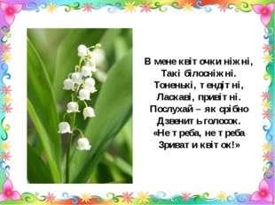 В мене квіточки ніжні, Такі білосніжні. Тоненькі, тендітні, Ласкаві, привітні