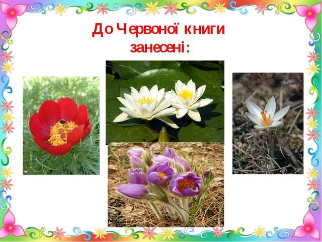 До Червоної книги занесені: