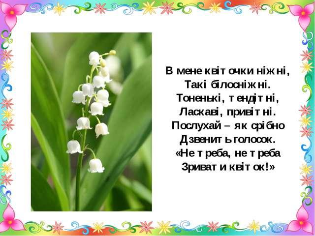 В мене квіточки ніжні, Такі білосніжні. Тоненькі, тендітні, Ласкаві, привітні...