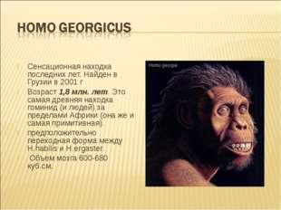 Сенсационная находка последних лет. Найден в Грузии в 2001 г Возраст 1,8 млн.