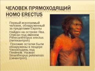 Первый ископаемый человек, обнаруженный за пределами Европы Найден на острове