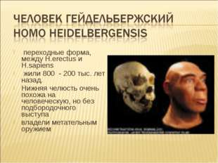 переходные форма, между H.erectus и H.sapiens жили 800 - 200 тыс. лет назад.