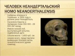 Найдены впервые в Германии в 1856 году в долине реки Неандеоталь Населяли Евр