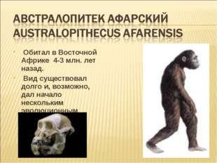 Обитал в Восточной Африке 4-3 млн. лет назад. Вид существовал долго и, возмо