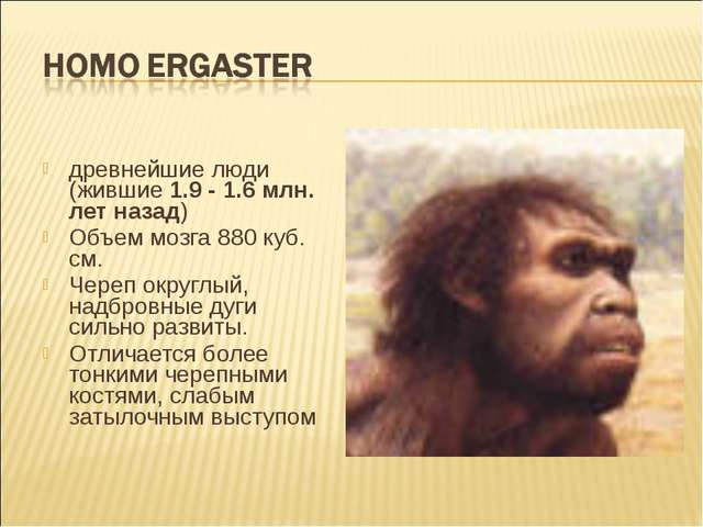 древнейшие люди (жившие 1.9 - 1.6 млн. лет назад) Объем мозга 880 куб. см. Че...