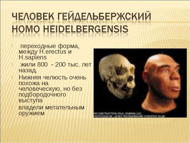 переходные форма, между H.erectus и H.sapiens жили 800 - 200 тыс. лет назад....