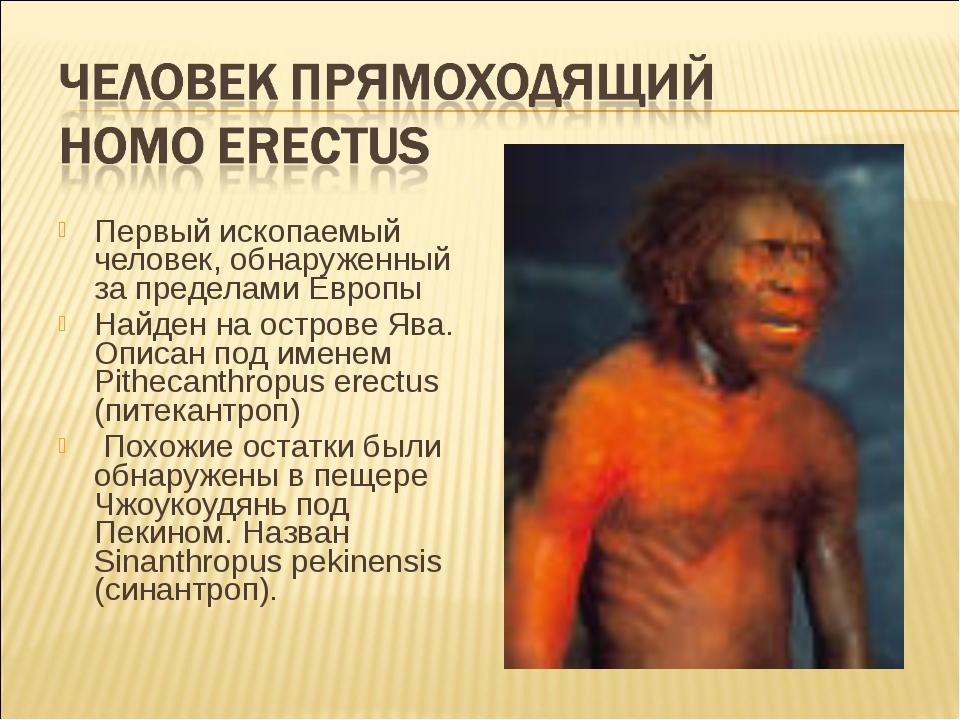 Первый ископаемый человек, обнаруженный за пределами Европы Найден на острове...