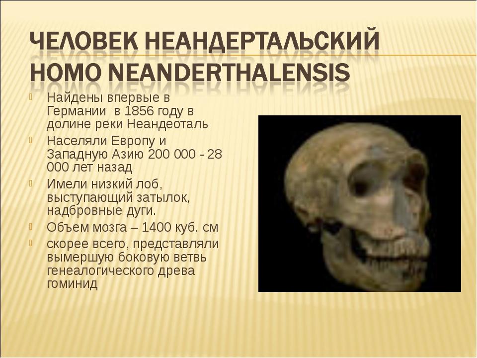 Найдены впервые в Германии в 1856 году в долине реки Неандеоталь Населяли Евр...
