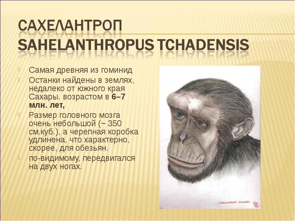Самая древняя из гоминид Останки найдены в землях, недалеко от южного края Са...