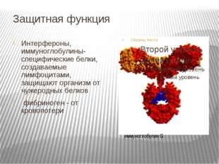 Защитная функция Интерфероны, иммуноглобулины-специфические белки, создаваемы