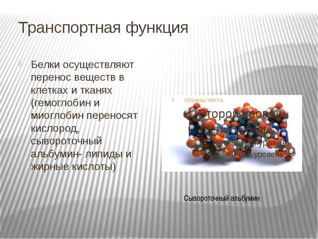 Транспортная функция Белки осуществляют перенос веществ в клетках и тканях (г...
