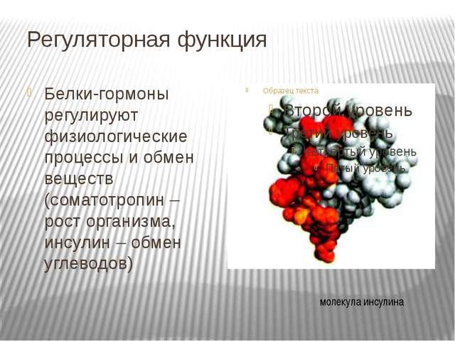 Регуляторная функция Белки-гормоны регулируют физиологические процессы и обме...