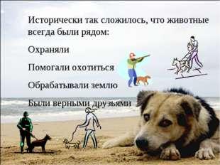 Исторически так сложилось, что животные всегда были рядом: Охраняли Помогали