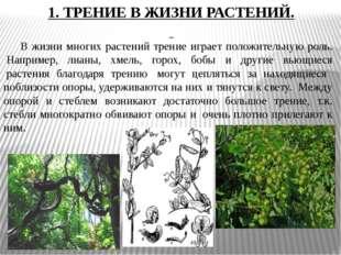 1. ТРЕНИЕ В ЖИЗНИ РАСТЕНИЙ. В жизни многих растений трение играет положитель