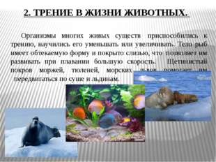 2. ТРЕНИЕ В ЖИЗНИ ЖИВОТНЫХ. Организмы многих живых существ приспособились к