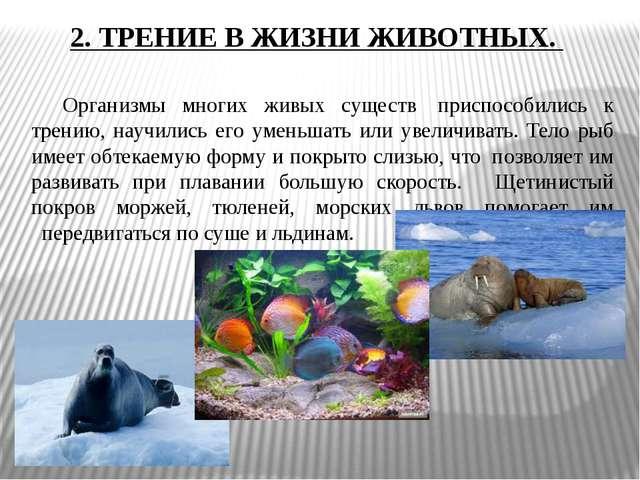 2. ТРЕНИЕ В ЖИЗНИ ЖИВОТНЫХ. Организмы многих живых существ приспособились к...