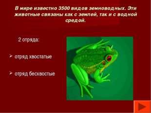 В мире известно 3500 видов земноводных. Эти животные связаны как с землей, та