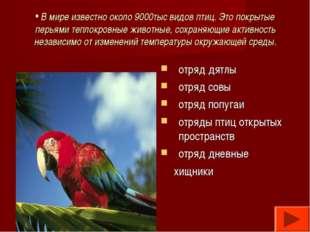 В мире известно около 9000тыс видов птиц. Это покрытые перьями теплокровные