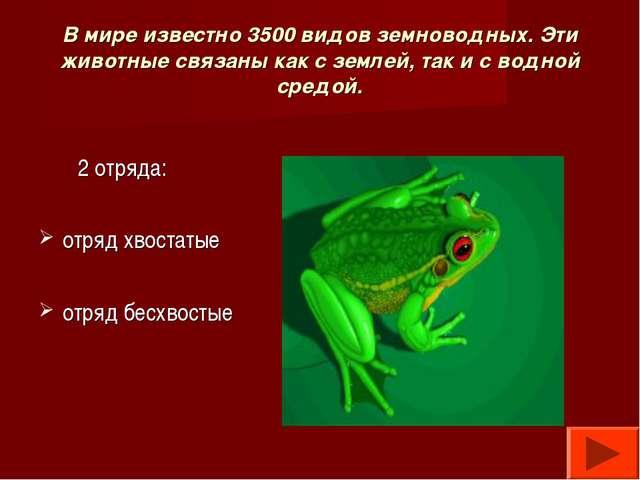 В мире известно 3500 видов земноводных. Эти животные связаны как с землей, та...