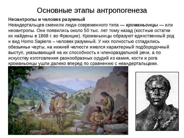 Основные этапы антропогенеза Неоантропы и человек разумный Неандертальцев сме...