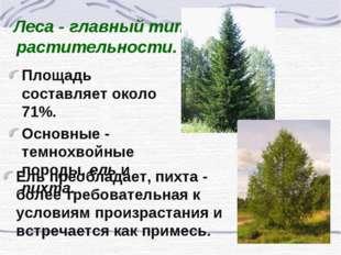 Леса - главный тип растительности. Площадь составляет около 71%. Основные - т