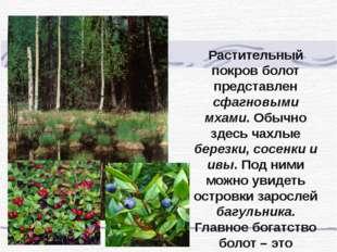 Растительный покров болот представлен сфагновыми мхами. Обычно здесь чахлые б