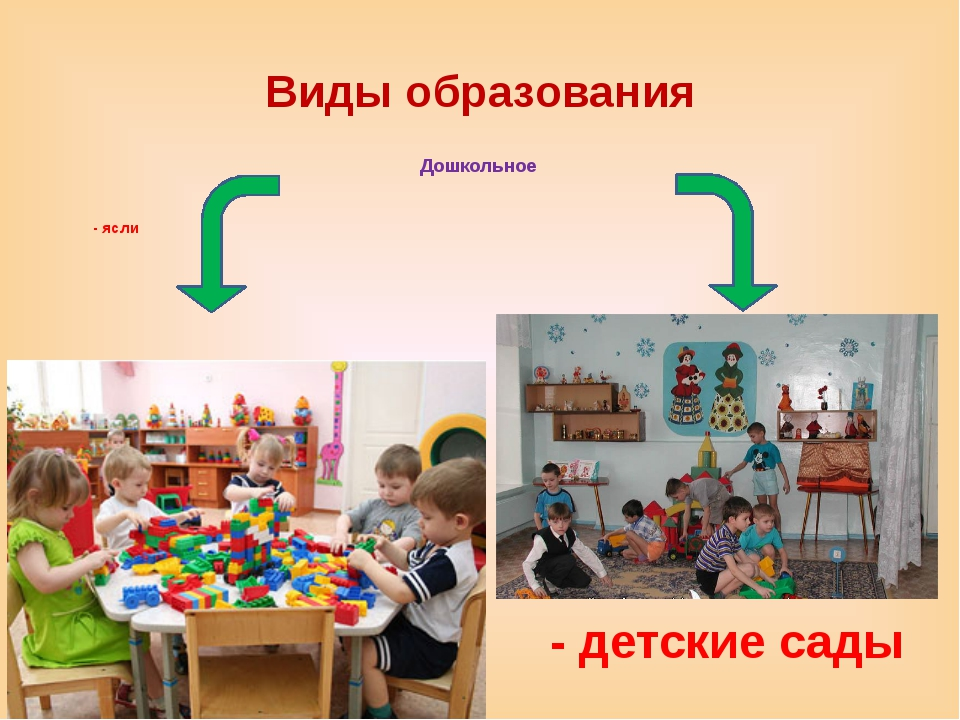 Виды образования Дошкольное - ясли - детские сады