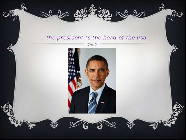 the president is the head of the usa
