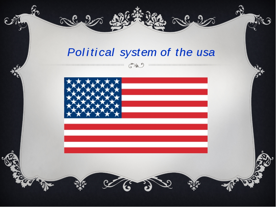 Political system of the usa