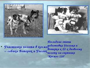 Участники полета в космос – собаки Ветерок и Уголек Последние этапы подготовк