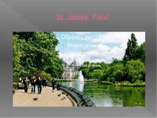 St. James` Park!