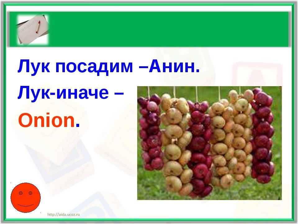 Лук посадим –Анин. Лук-иначе – Onion.