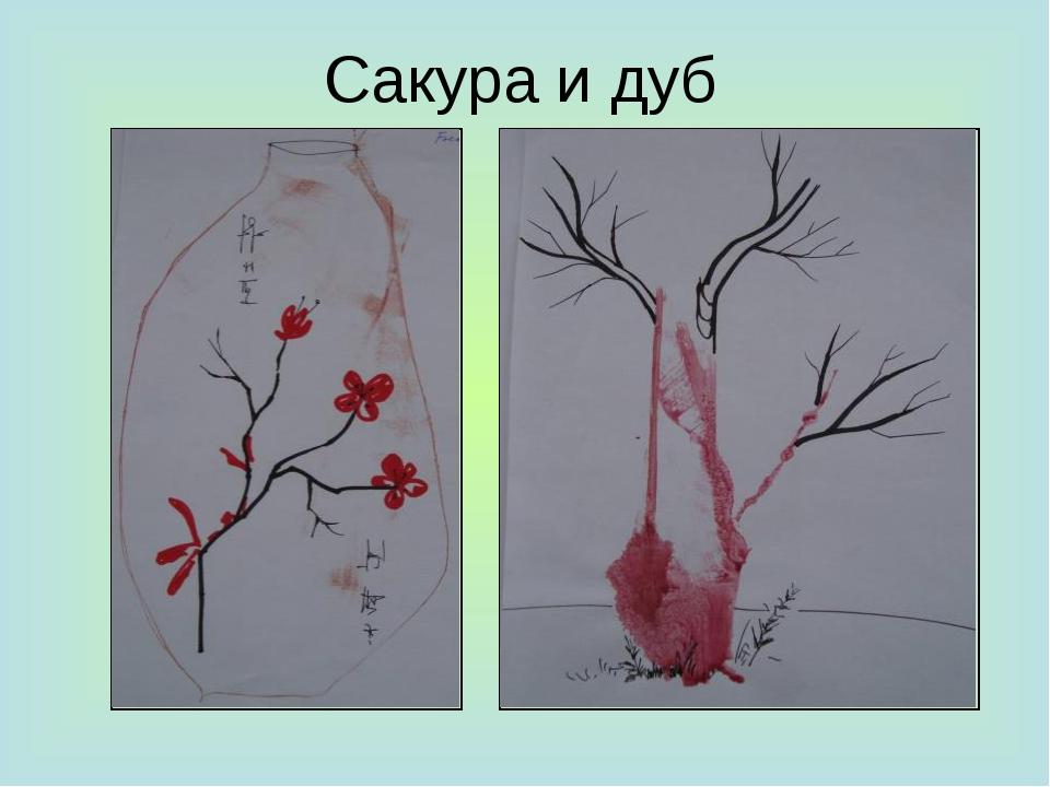 Сакура и дуб