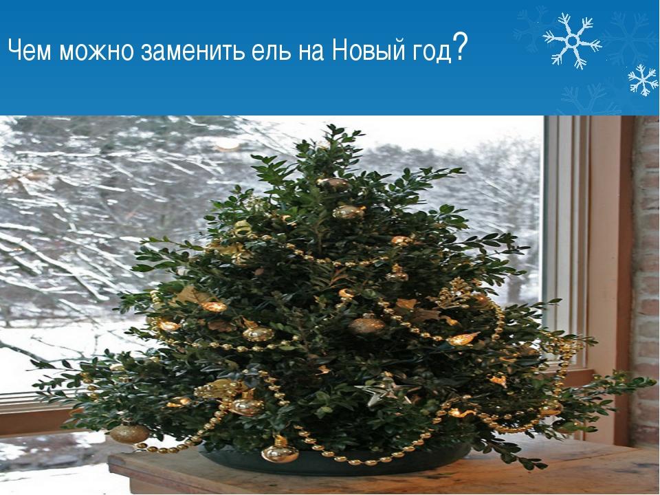 Чем можно заменить ель на Новый год? Самшит вместо елки