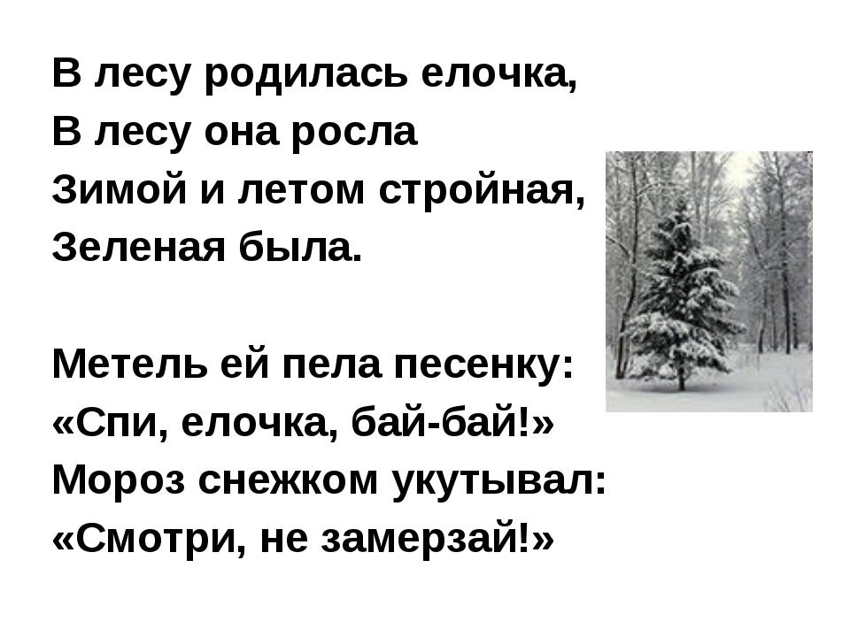 В лесу родилась елочка, В лесу она росла Зимой и летом стройная, Зеленая была...
