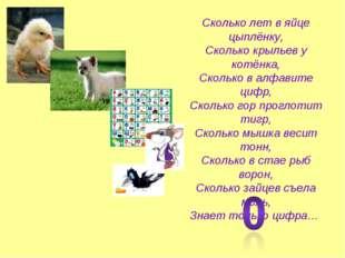 Сколько лет в яйце цыплёнку, Сколько крыльев у котёнка, Сколько в алфавите ци