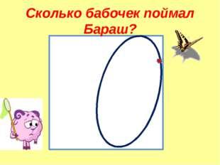 Сколько бабочек поймал Бараш?