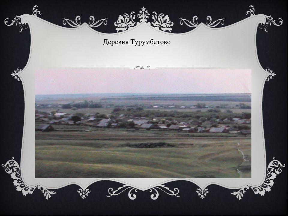 Деревня Турумбетово