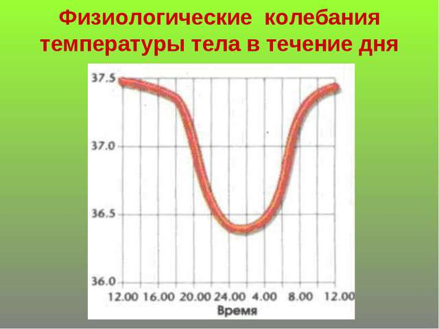 Физиологические колебания температуры тела в течение дня